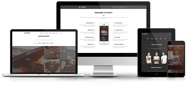 >Premium WordPress Themes